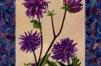 Purple Dahlias Collage